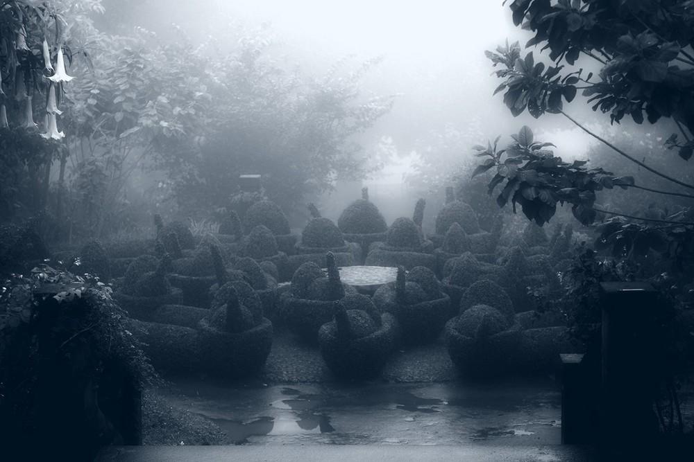 mist005.jpg