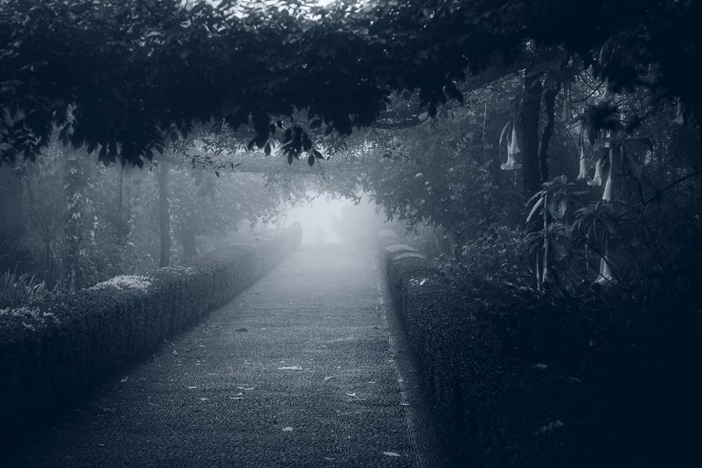 mist006.jpg