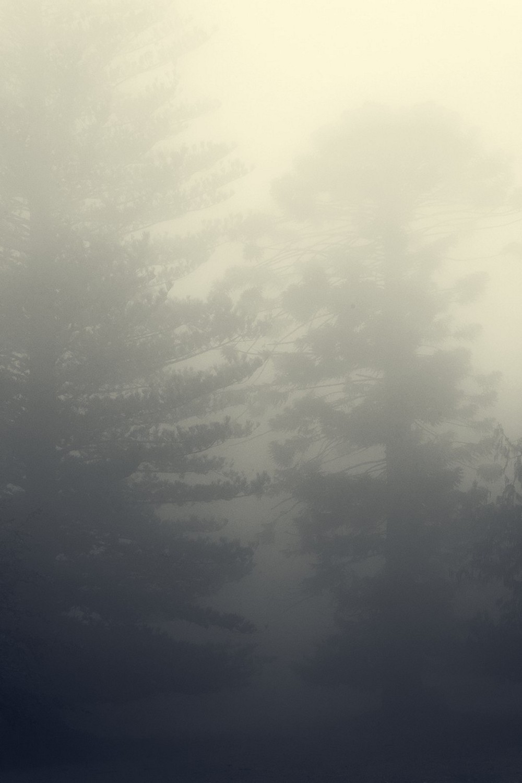 mist007.jpg