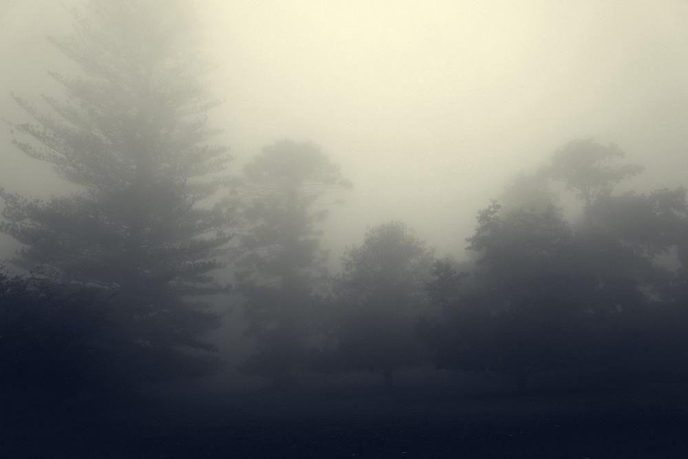 mist008.jpg