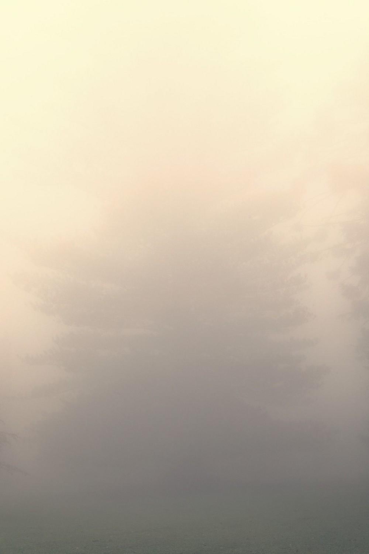 mist011.jpg
