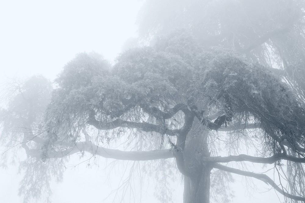 mist013.jpg