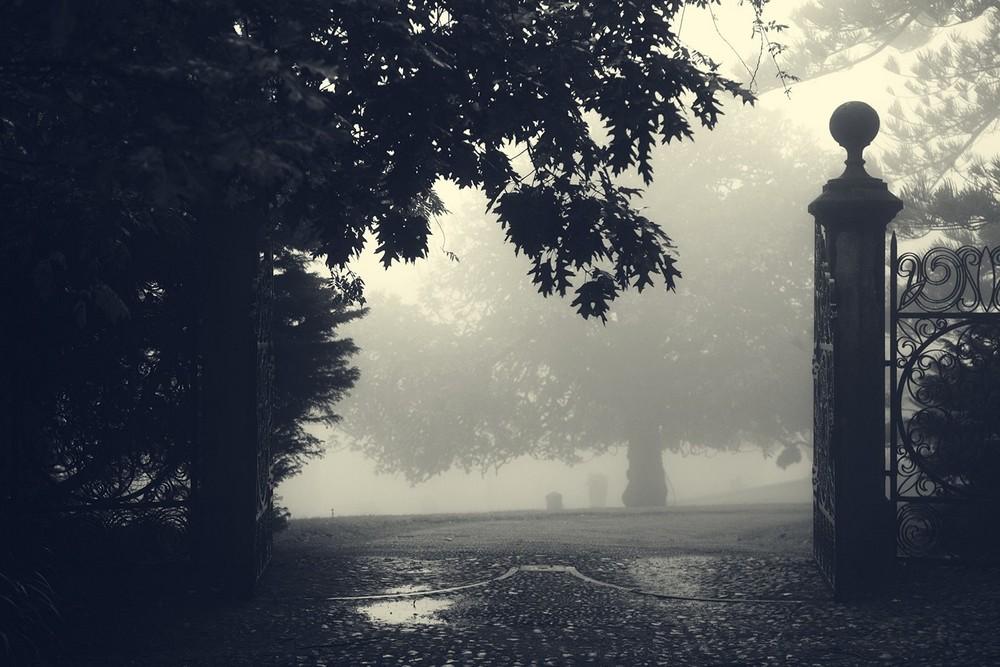 mist016.jpg