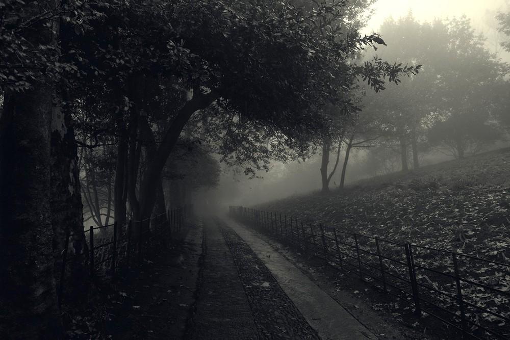 mist021.jpg