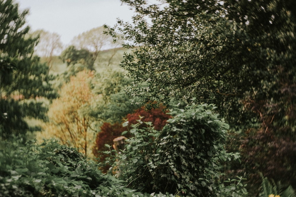 foxandowl.uk-155.jpg