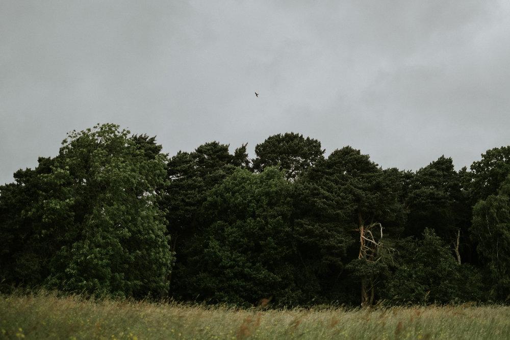 foxandowl.uk_0060.jpg