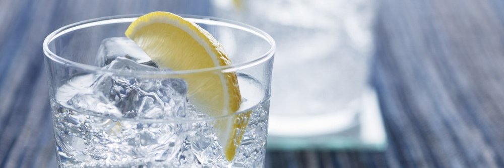 Sparkling water with lemon. Gin and tonic with ice and lemon.