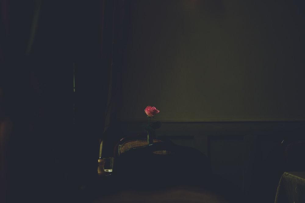 Rose (2016)