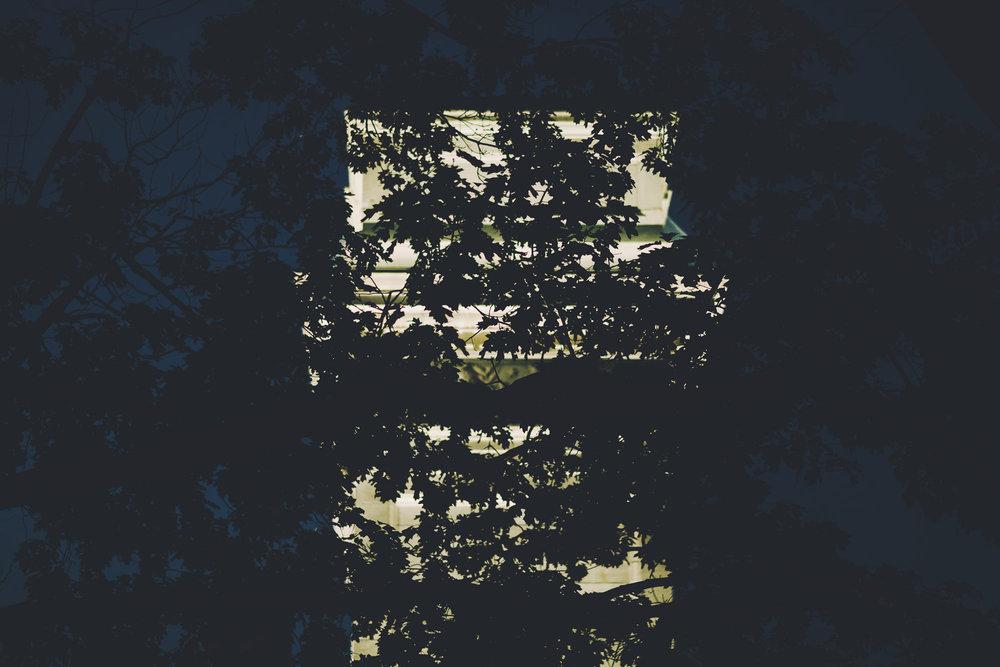 fragmented_38.jpg