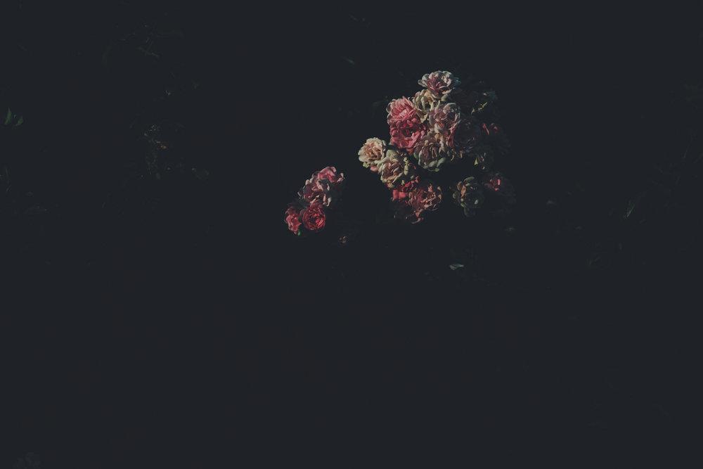 fragmented_39.jpg