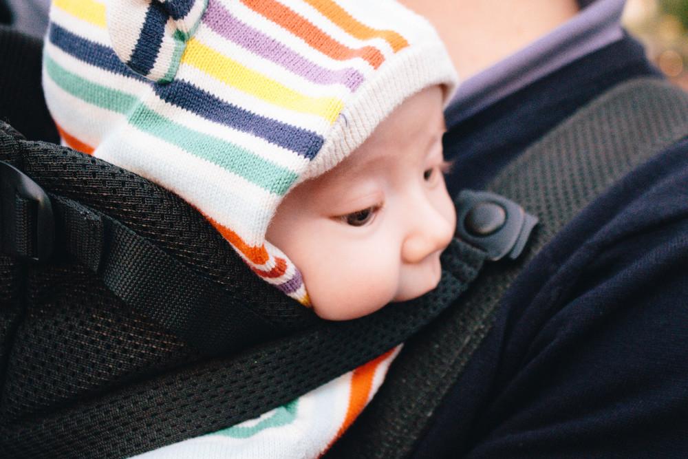 newborn baby carrier, disney with a newborn, disneyland with a newborn