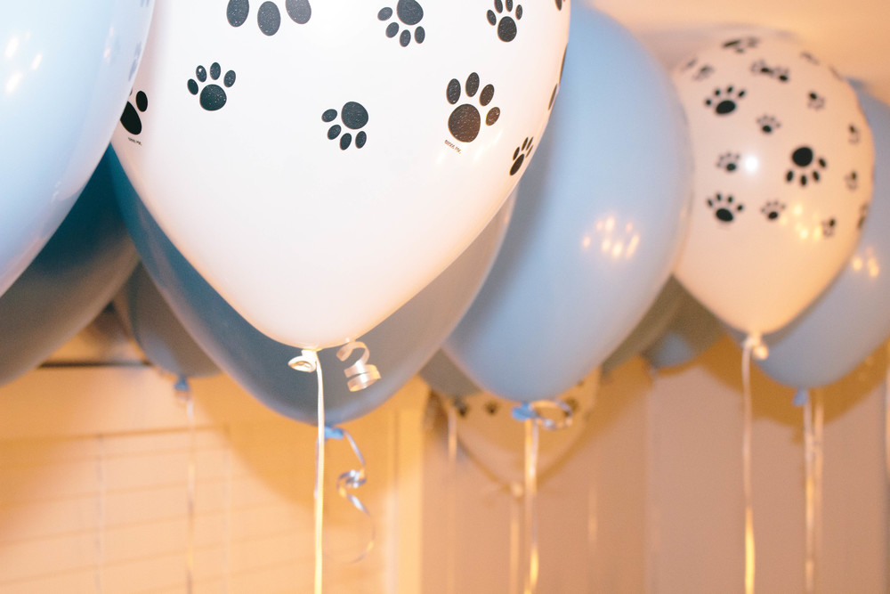paw print balloons for a birthday party