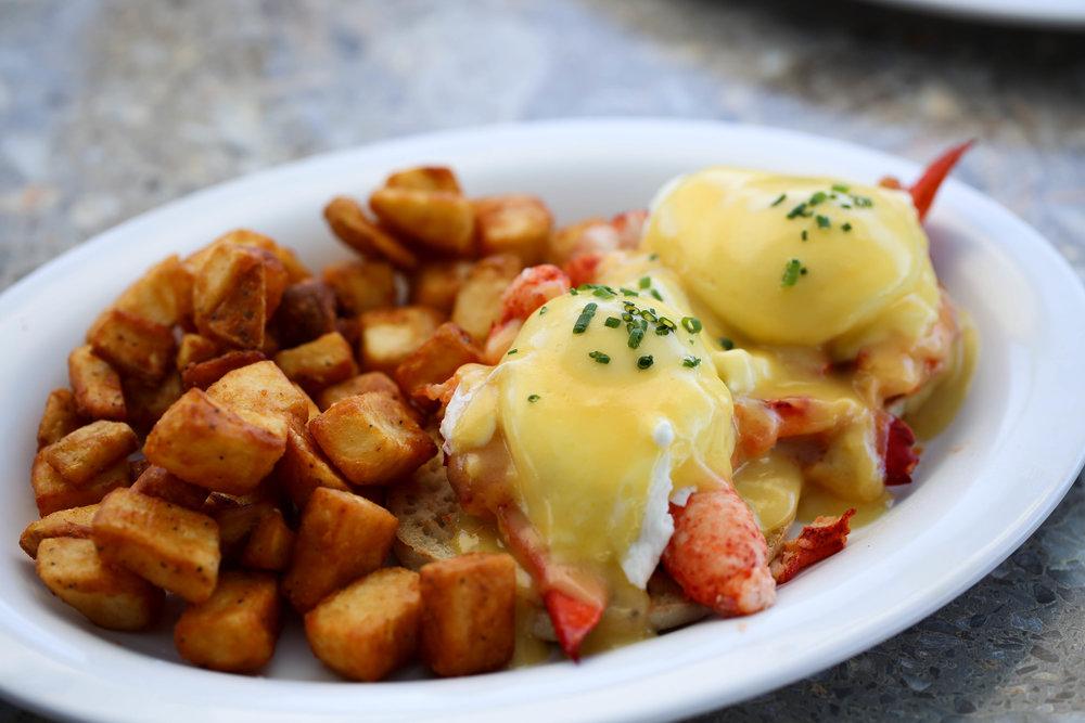 Sarasota Florida best breakfast, lobster, eggs benedict