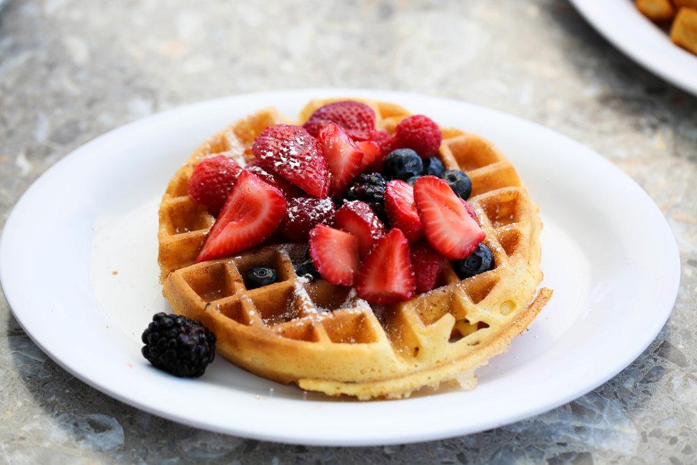 Sarasota Florida best breakfast, waffle with fresh berries