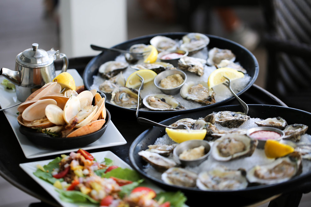 florida oysters, claims, and wild bore