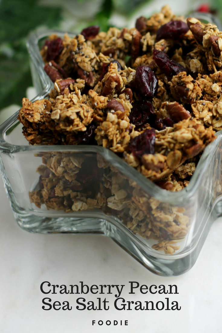 cranberry pecan sea salt granola recipe, cranberry sea salt granola, granola, how to make granola, granola with cranberry and pecan, last minute holiday recipe, holiday treats,