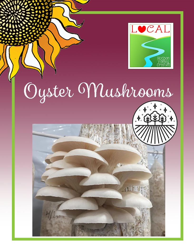Oyster Mushrooms from Woven Stars Farms