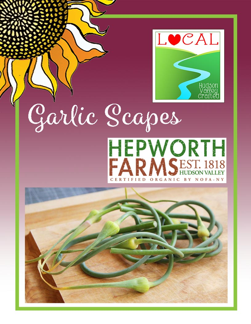 Garlic Scapes from Hepworth Farm