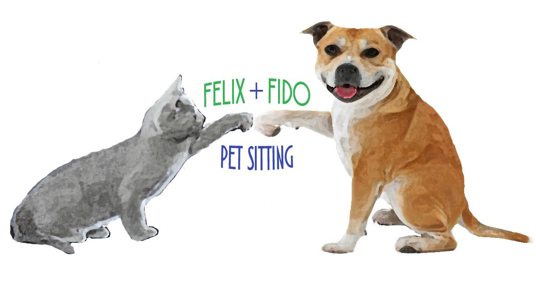client info felix fido pet sitting austin tx
