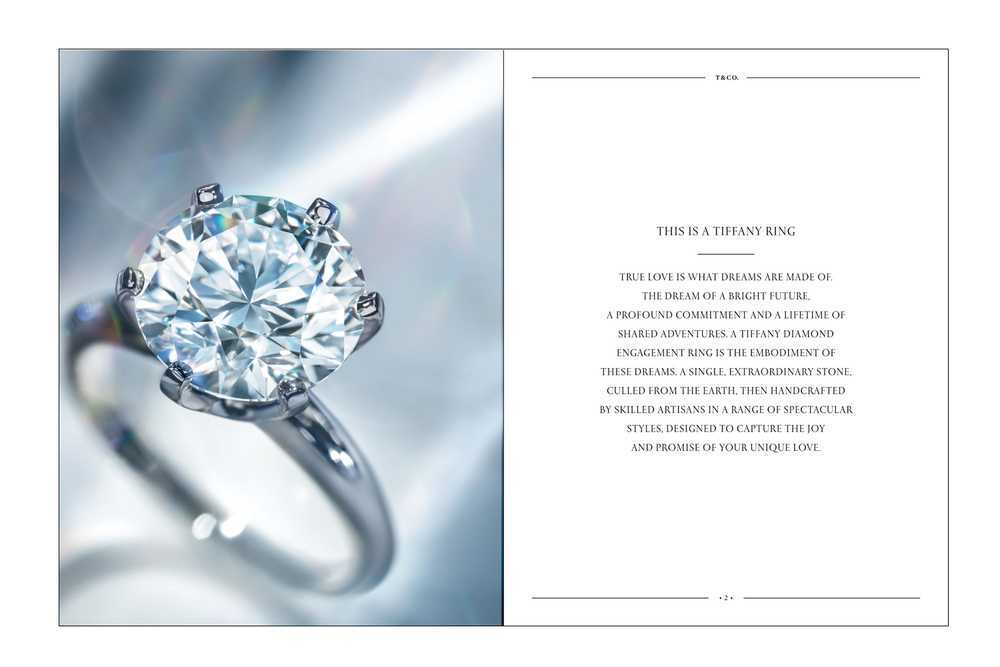 Bridal Catalogue Photography / Raymond Meier
