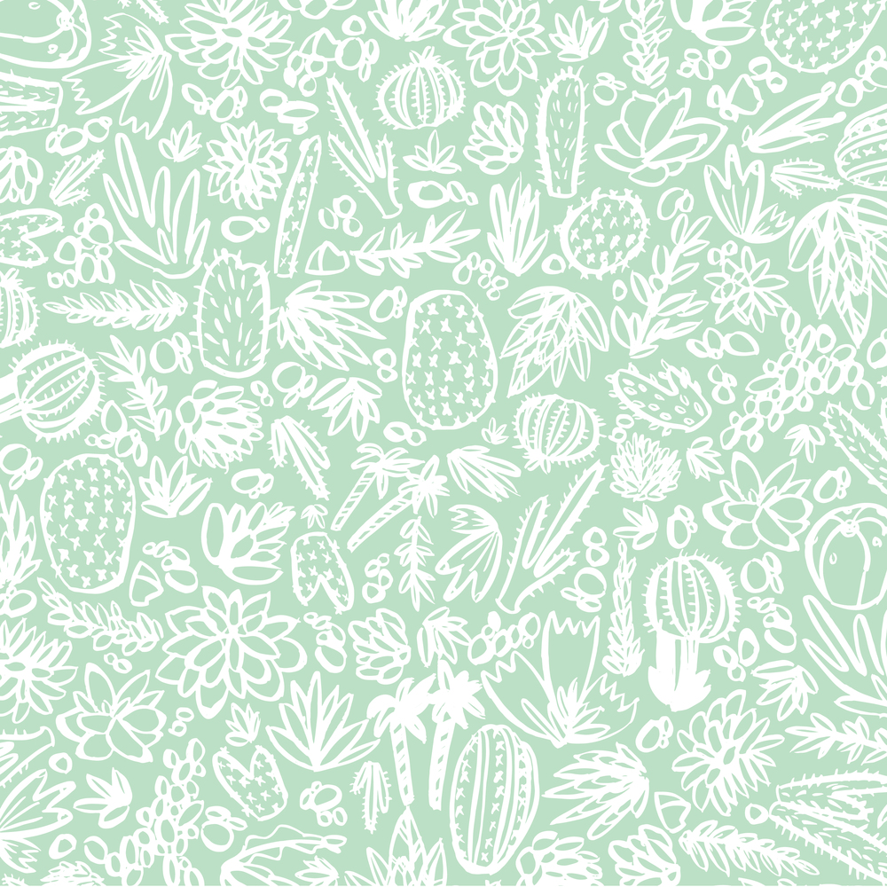 succulents & cacti pattern-01.jpg