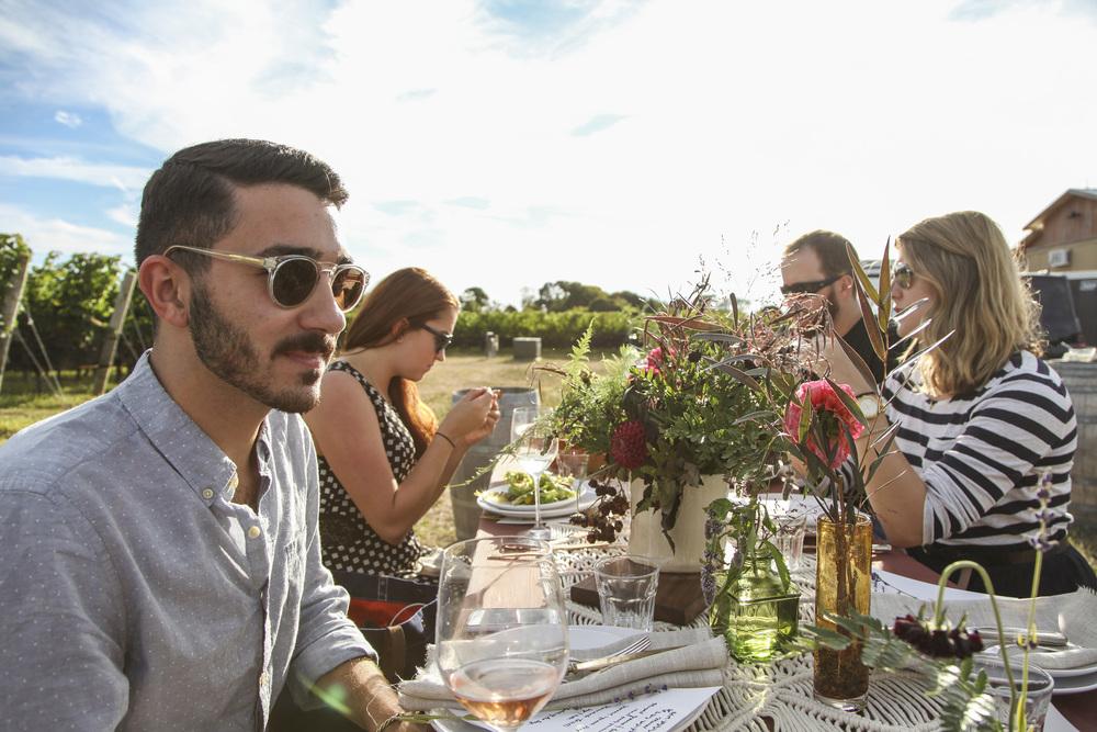 vineyard26.jpg