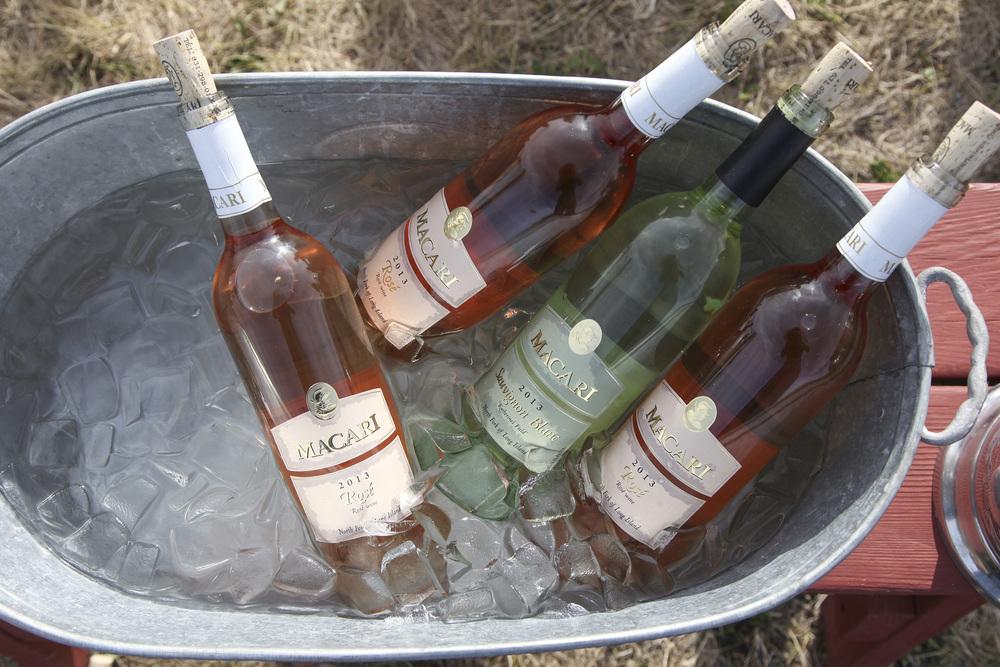 vineyard16.jpg