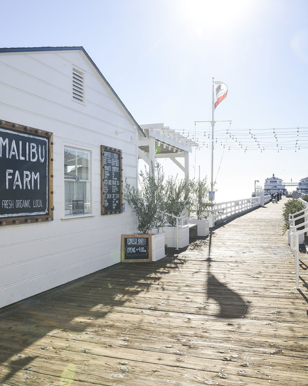 local-creative-malibu-farm-gather-19.jpg