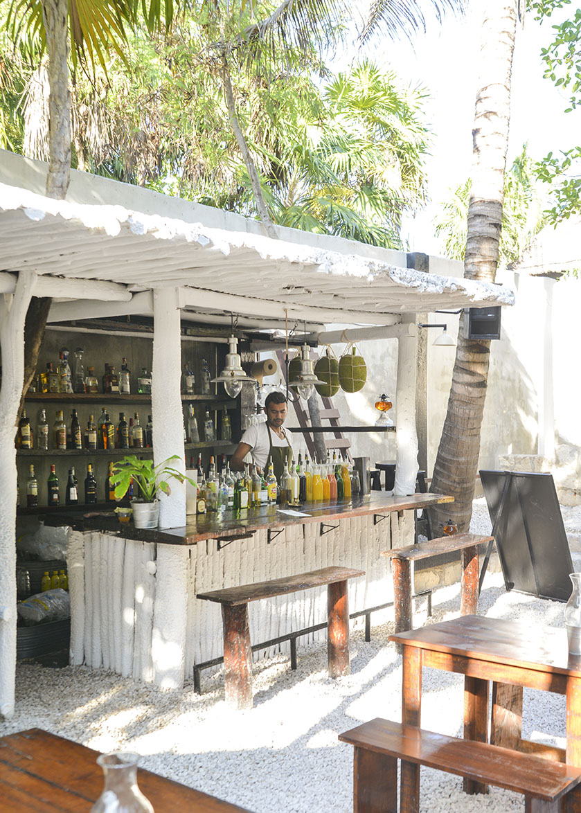Local_creative_hartwood_tulum_food_12.jpg