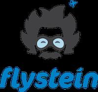 flystein.png