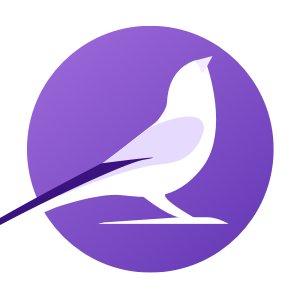 flyright logo.jpg