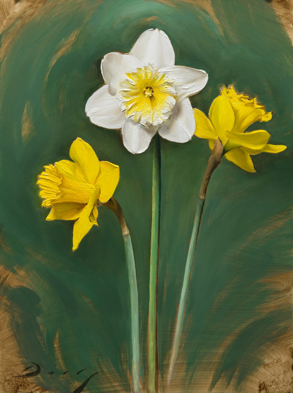 Daffodils - April 2017