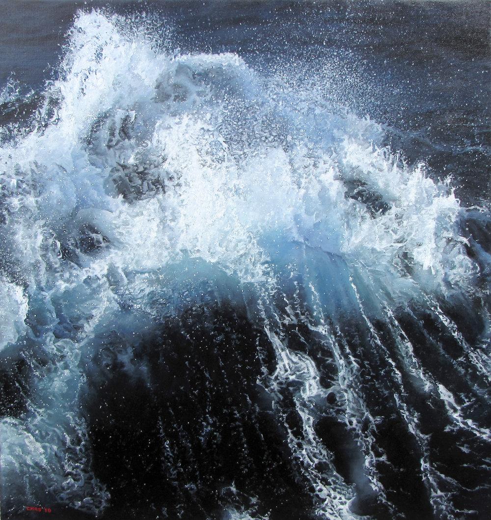 Wave on Drake Passage