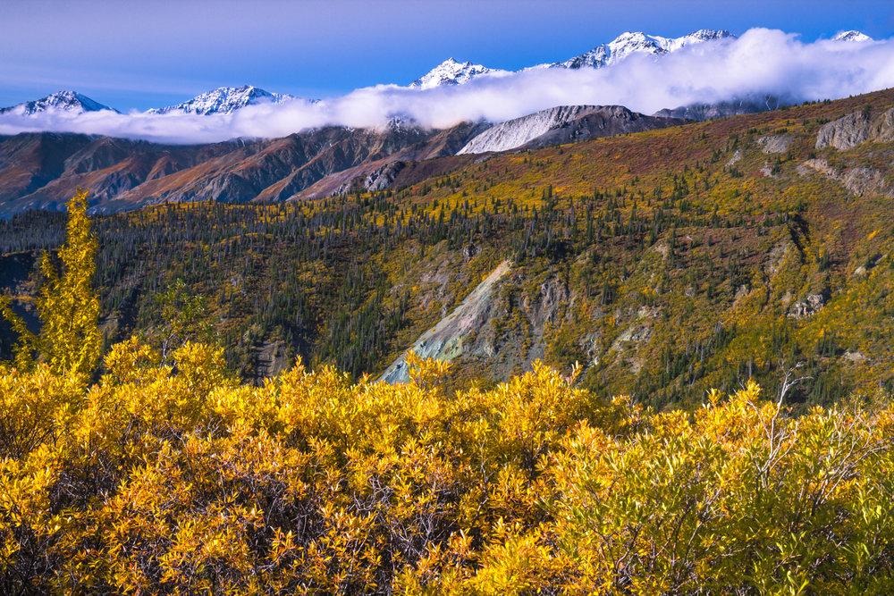 8. Kluane National Park in Autumn (IMG_8983).jpg