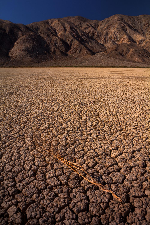 Clark Dry Lake Bed.jpg