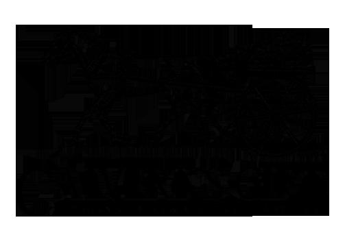 CGF-Logo.png