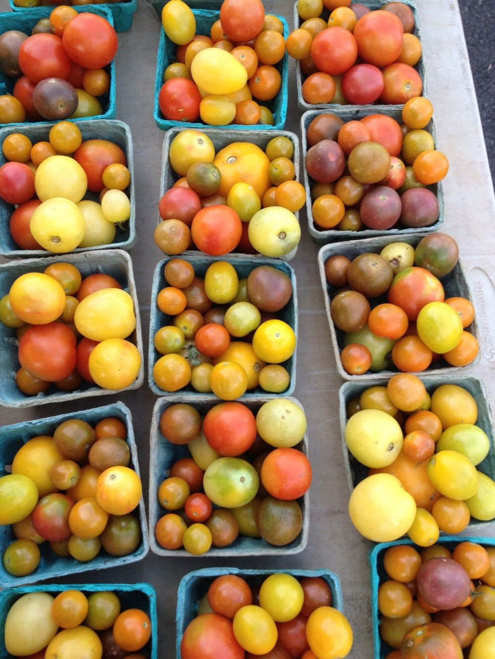 Tomatoes-in-boxes-Maryland-CSA.jpg