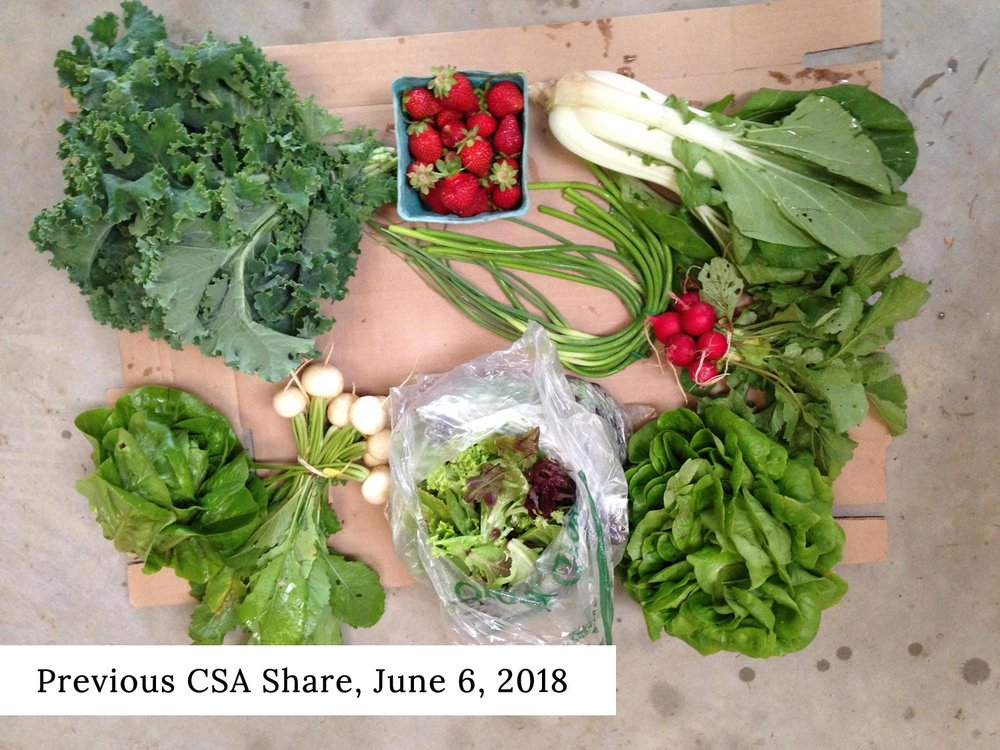 Baltimore-CSA-Calverts-Gift-Farm-June-06-2018-with-text.jpg