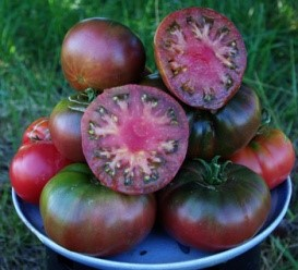 Black Krim - Rich tomato flavor in a Russian heirloom. 69 days from transplant to harvest