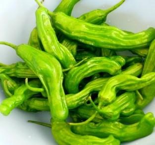 Shishito - Spanish frying pepper, milder than padron