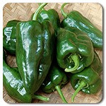 Ancho - aka poblano.  Mildly spicy, great for stuffing