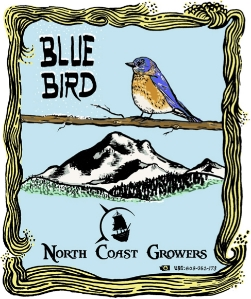 Blue Bird — North Coast Growers