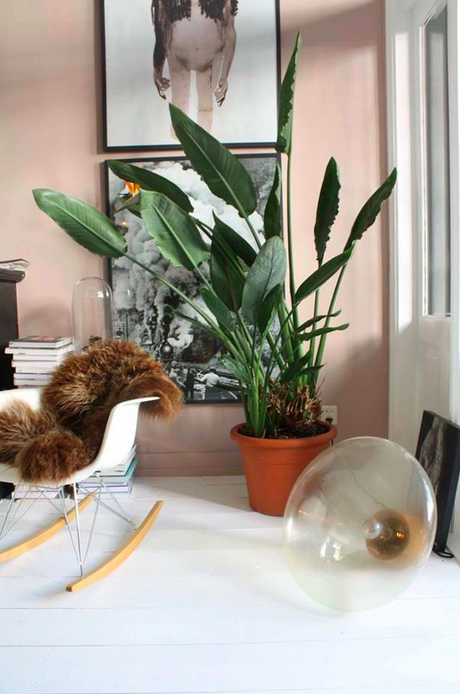 THE NICE STUFF COLLECTOR INTERIOR BLOG INTERIEUR THEO-BERT POT GREEN PLANT