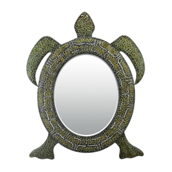 turtle mirror.jpg