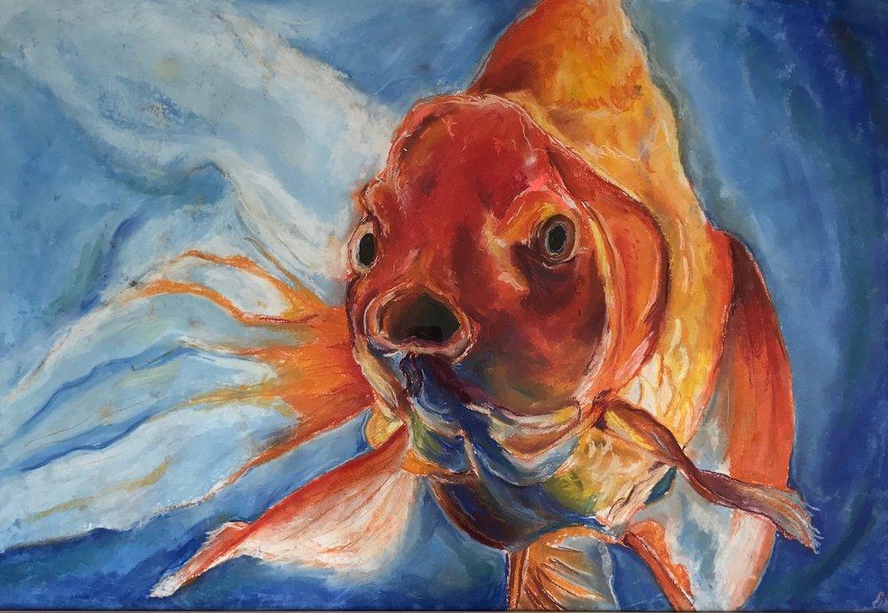 A_JPearlstein_Goldfish.jpg