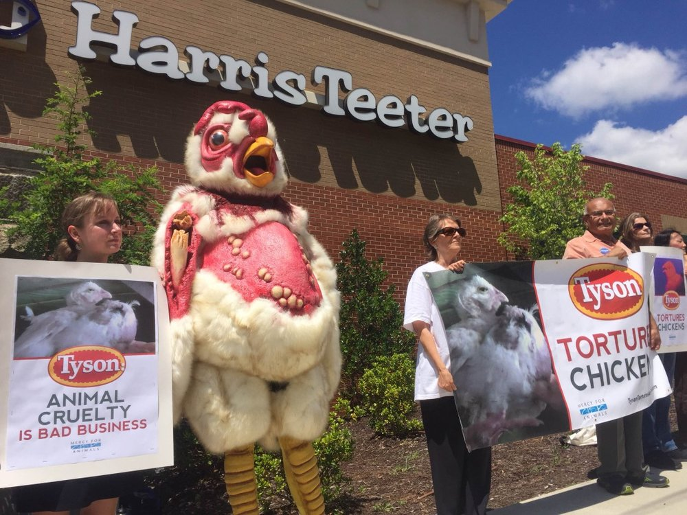 Tyson Foods are not renowned for their animal welfare policies.