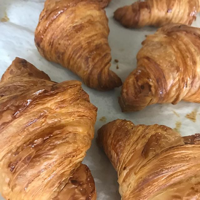 We are sold out of regular croissants, chocolate croissants and monkey bread muffins. We will have fresh batches tomorrow