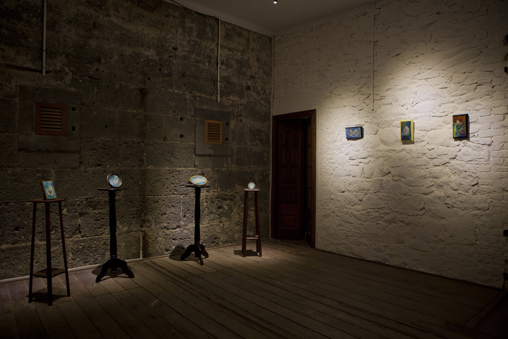 Shiraz Bayjoo, Installation View,  Edge Effects,  La Citadelle, Mauritius, 2016