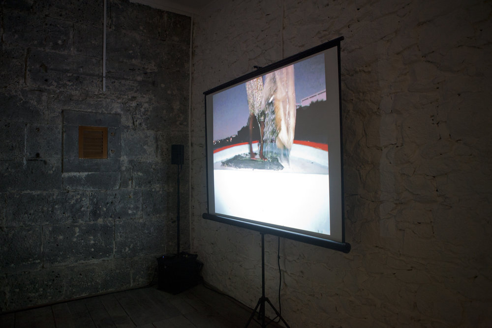 Diana Heise, Installation view,  Edge Effects,  La Citadelle, Mauritius, 2016