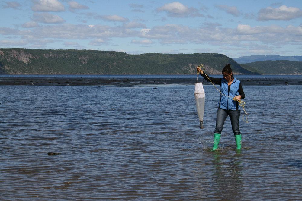 Résidence au Musée du Fjord en collaboration avec le Centre d'artiste Séquence,cueillette de plancton,La Baie (Québec), Canada  Photo credit : Sonia Boudreau